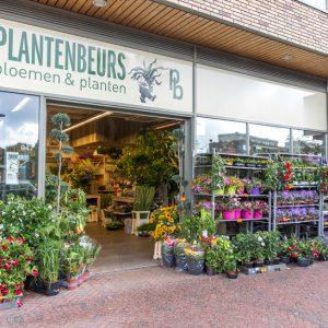 Plantenbeurs fleurig en kleurrijk